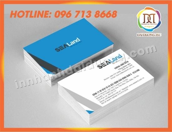 In Card Visit Tai Hai Duong 1