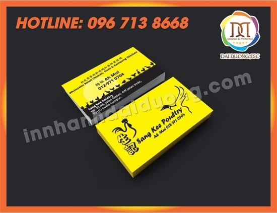 In Card Visit Tai Hai Phong