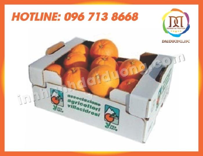 In Thung Carton Lay Ngay Tai Thanh Xuan 1