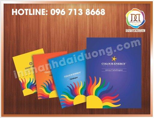 Thiet Ke Catalogue Nhanh
