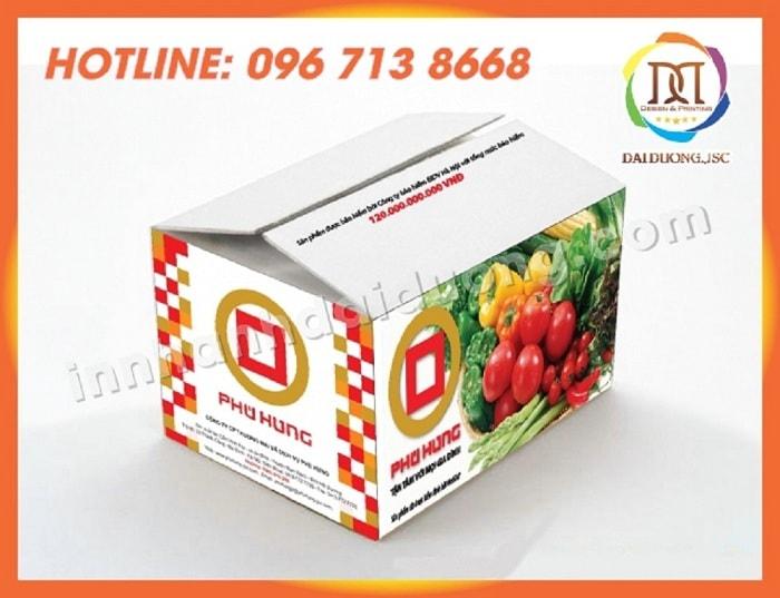 In Thung Carton Tai Ha Noi 1